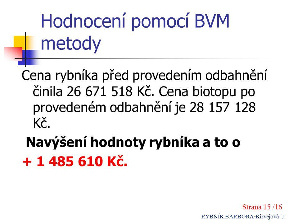 Hodnocení pomocí BVM metody