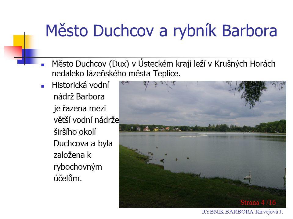 Město Duchcov a rybník Barbora