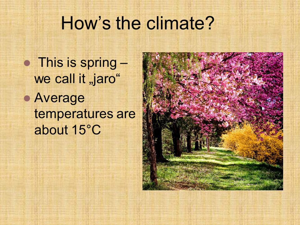 "How's the climate This is spring – we call it ""jaro"