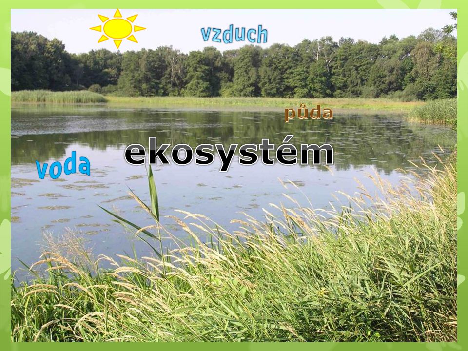 vzduch půda ekosystém voda