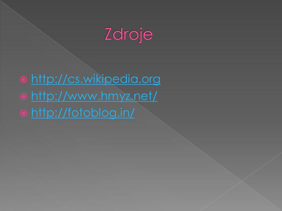 Zdroje http://cs.wikipedia.org http://www.hmyz.net/