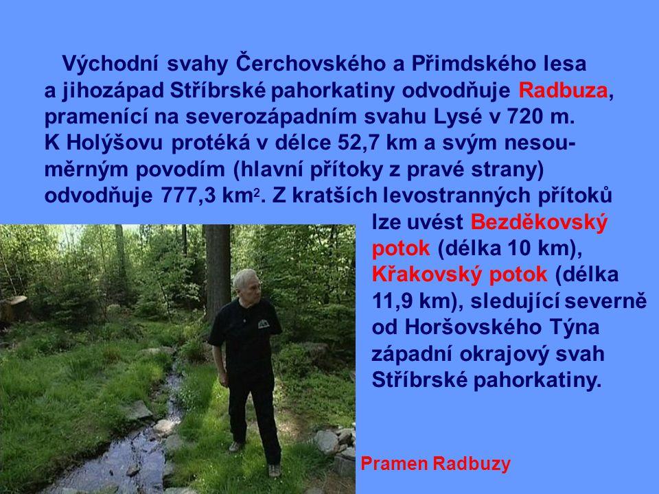 Východní svahy Čerchovského a Přimdského lesa