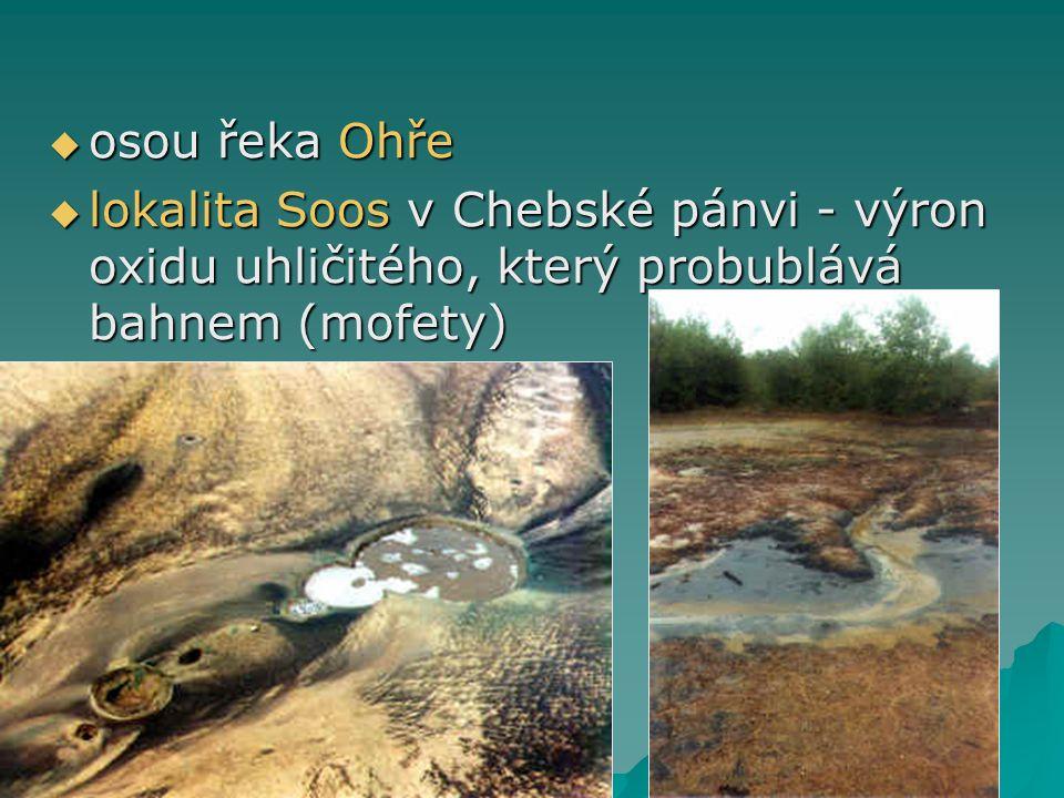 osou řeka Ohře lokalita Soos v Chebské pánvi - výron oxidu uhličitého, který probublává bahnem (mofety)