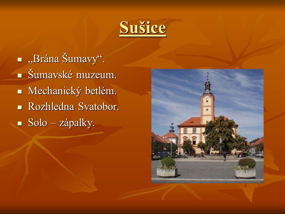"""Sušice """"Brána Šumavy . Šumavské muzeum. Mechanický betlém."""