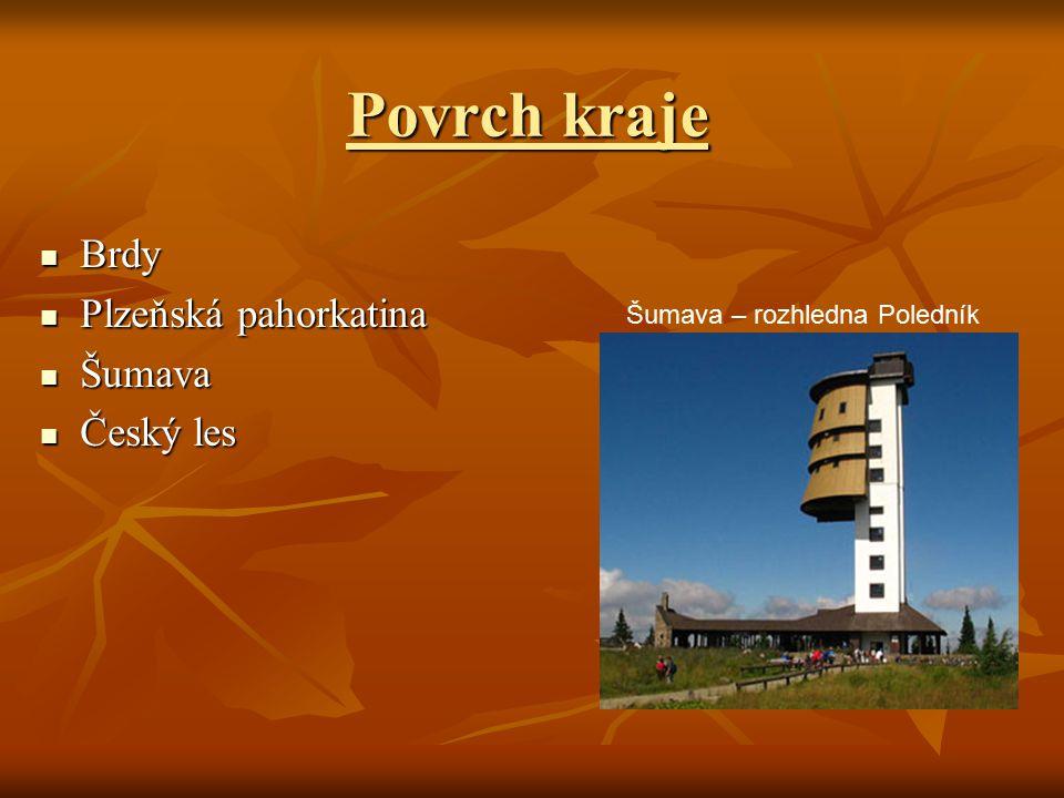 Povrch kraje Brdy Plzeňská pahorkatina Šumava Český les
