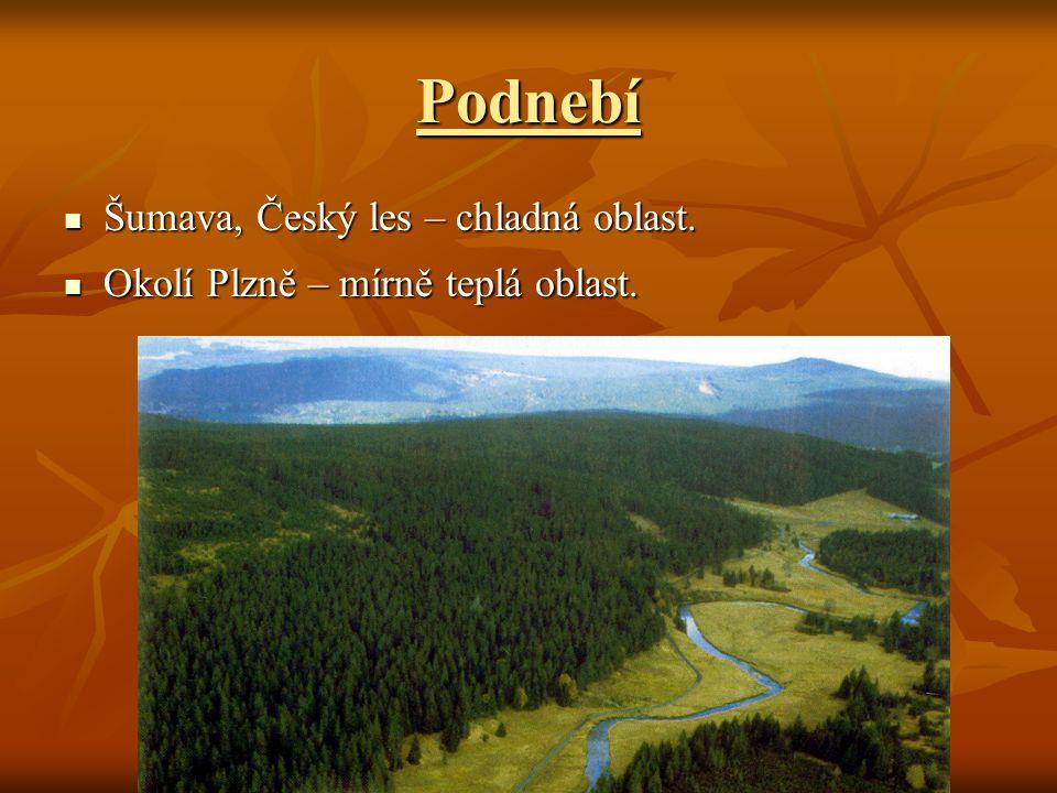 Podnebí Šumava, Český les – chladná oblast.