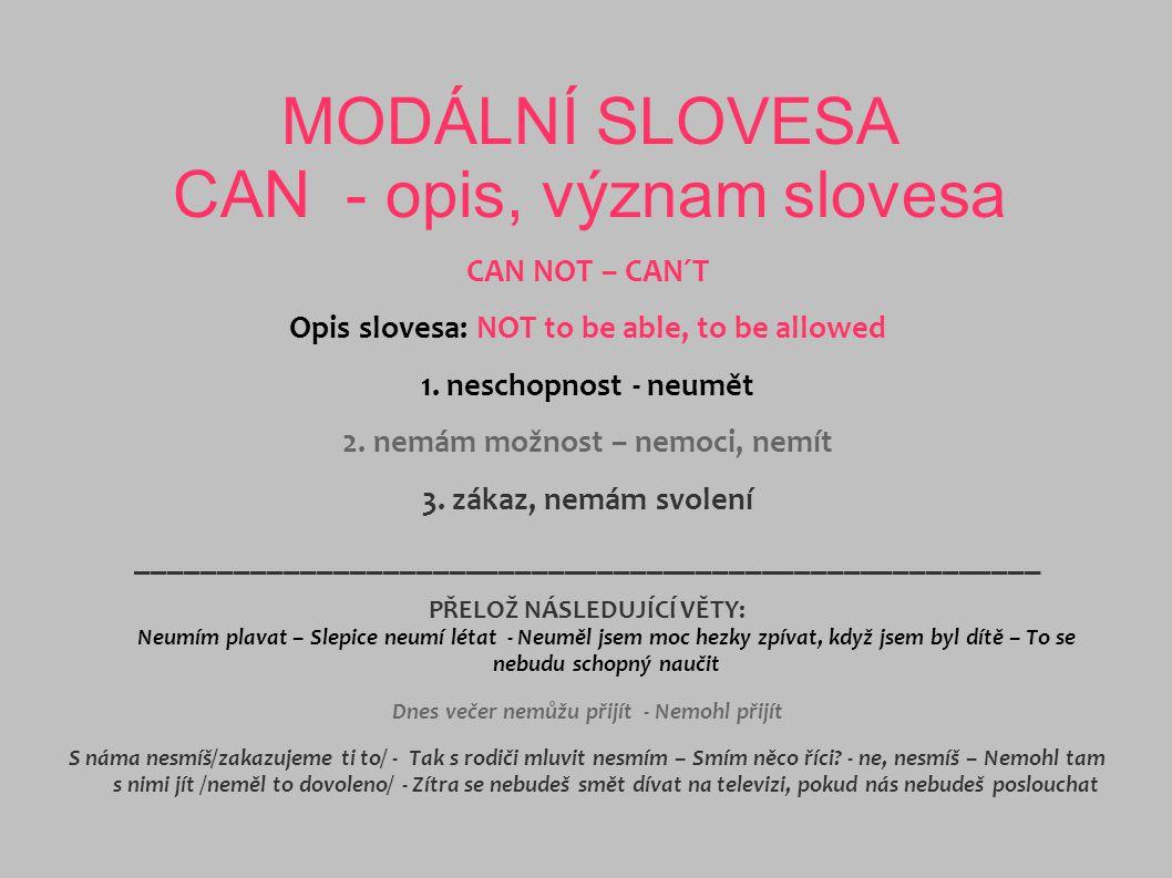 MODÁLNÍ SLOVESA CAN - opis, význam slovesa