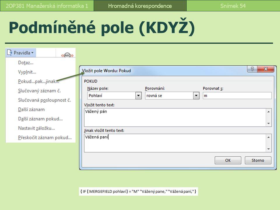 Podmíněné pole (KDYŽ) 2OP381 Manažerská informatika 1