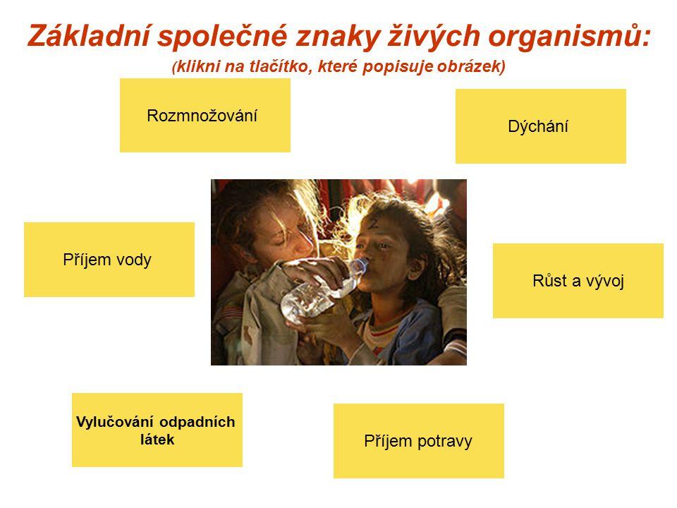 Základní společné znaky živých organismů: (klikni na tlačítko, které popisuje obrázek)