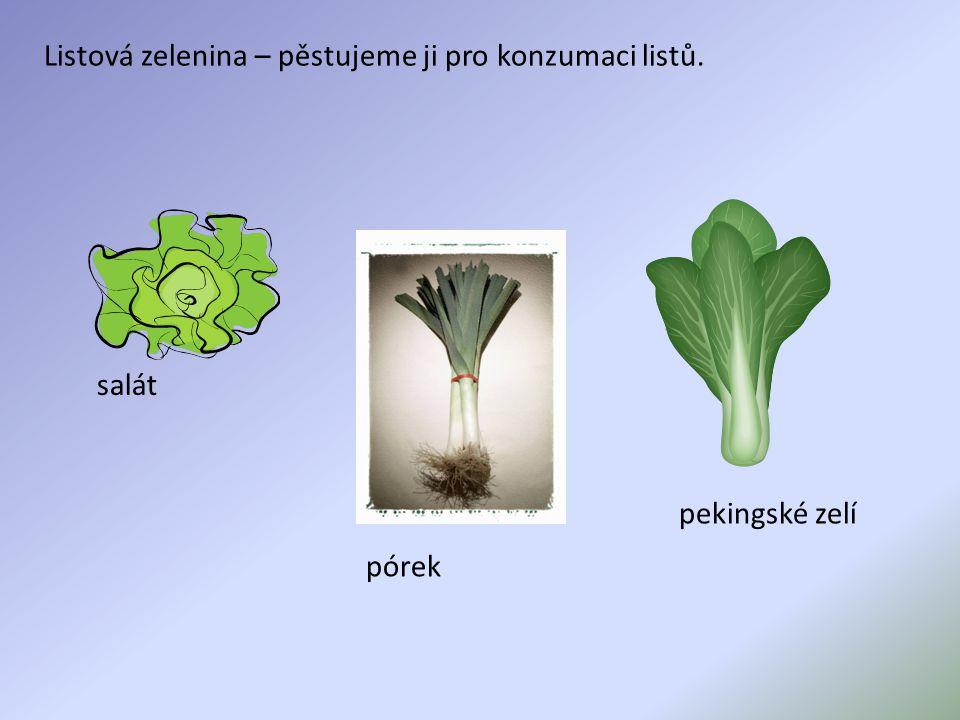 Listová zelenina – pěstujeme ji pro konzumaci listů.