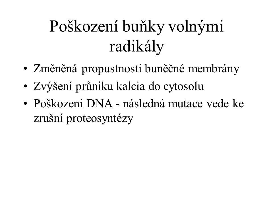Poškození buňky volnými radikály