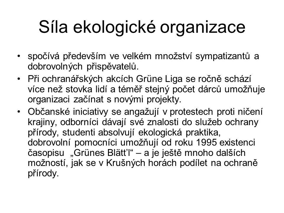 Síla ekologické organizace
