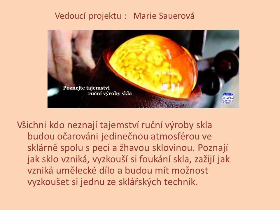 Vedoucí projektu : Marie Sauerová