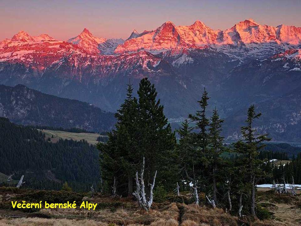 Večerní bernské Alpy