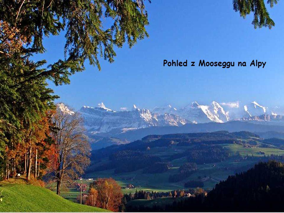 Pohled z Mooseggu na Alpy