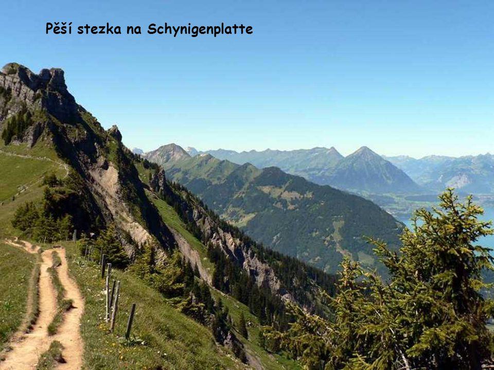 Pěší stezka na Schynigenplatte