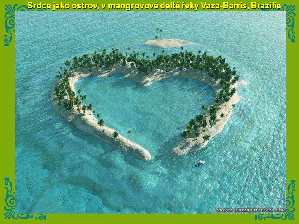 Srdce jako ostrov, v mangrovové deltě řeky Vaza-Barris, Brazílie