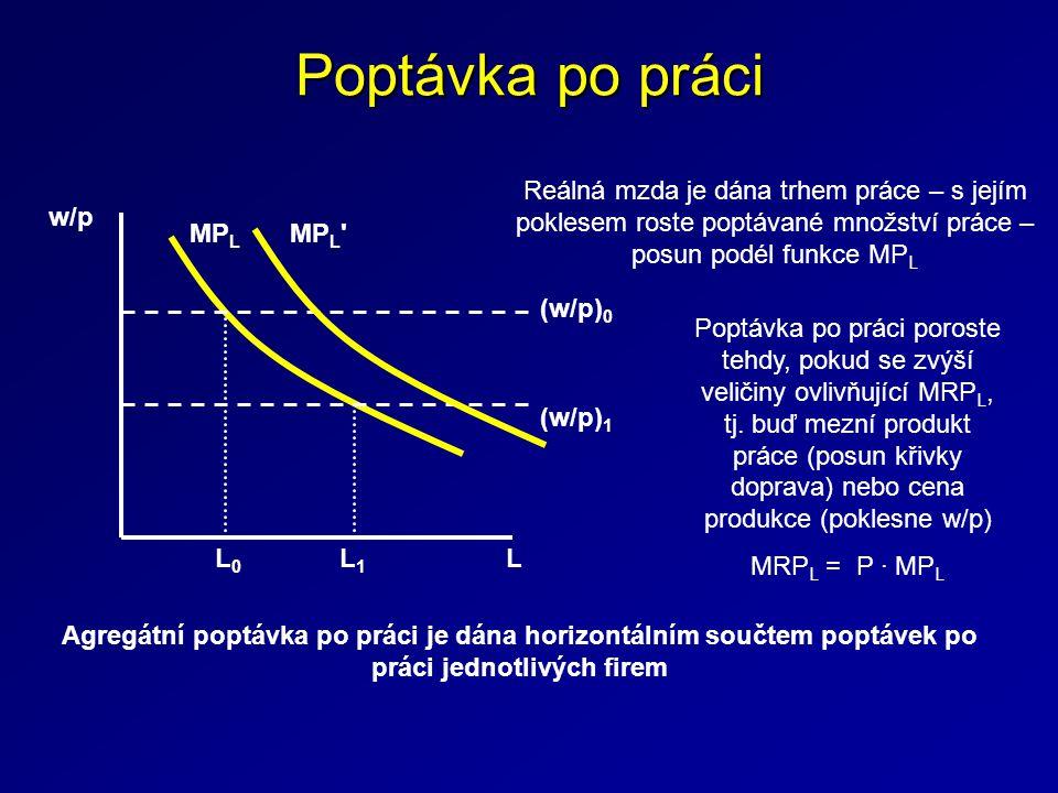 Poptávka po práci Reálná mzda je dána trhem práce – s jejím poklesem roste poptávané množství práce – posun podél funkce MPL.