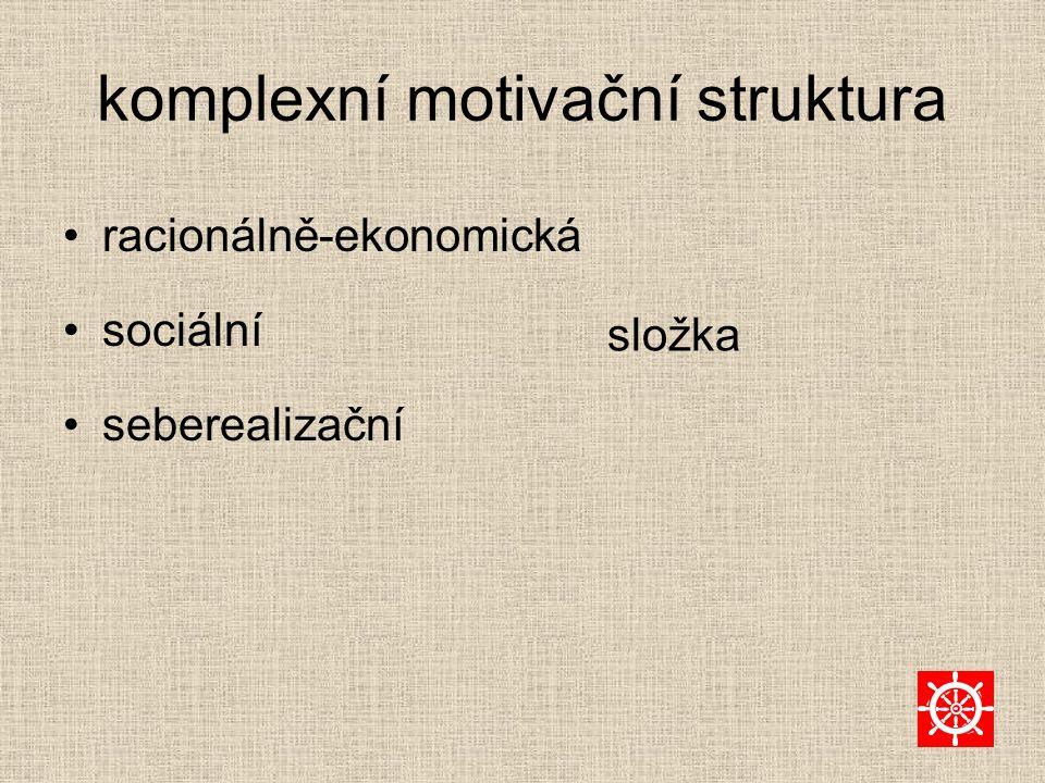 komplexní motivační struktura