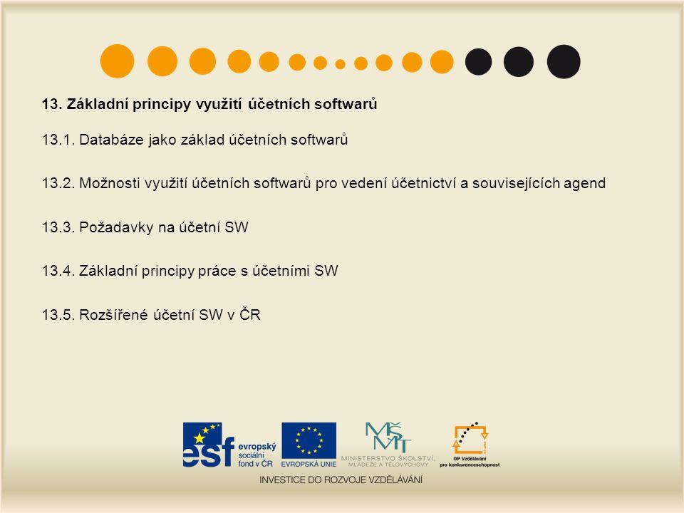 13. Základní principy využití účetních softwarů