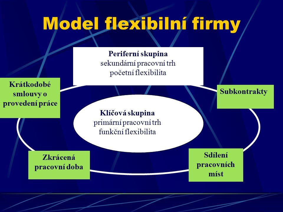 Model flexibilní firmy