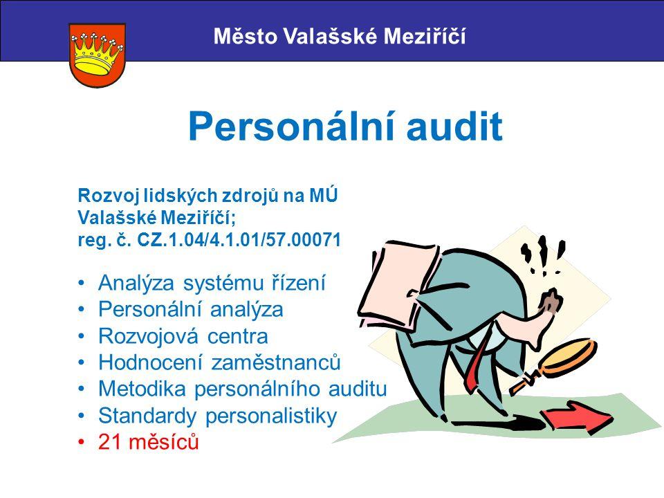 Personální audit Město Valašské Meziříčí Analýza systému řízení