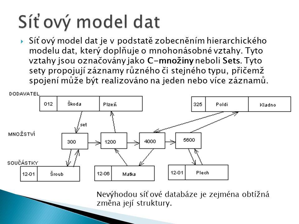 Síťový model dat