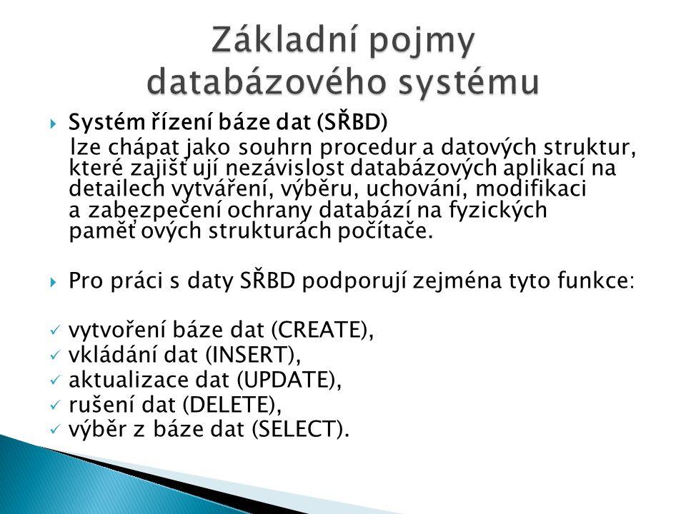 Základní pojmy databázového systému