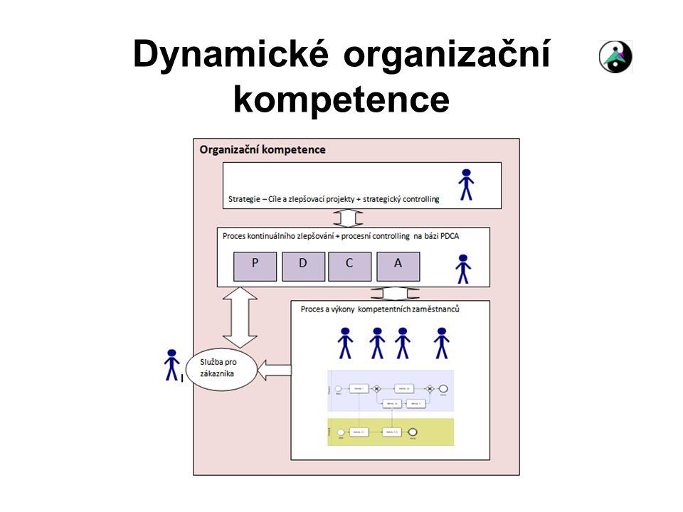 Dynamické organizační kompetence