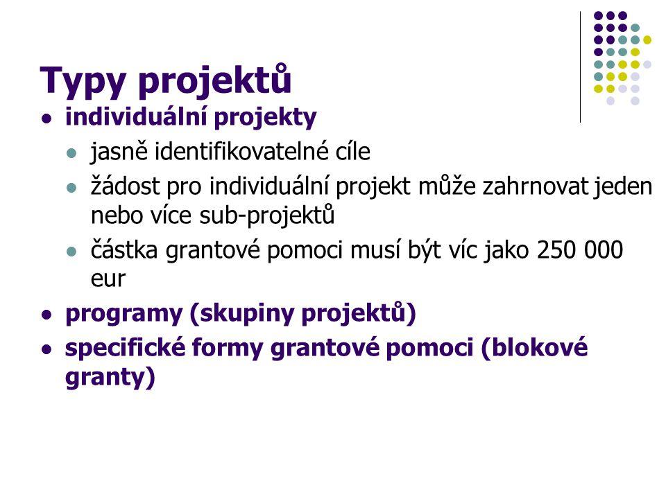 Typy projektů individuální projekty jasně identifikovatelné cíle