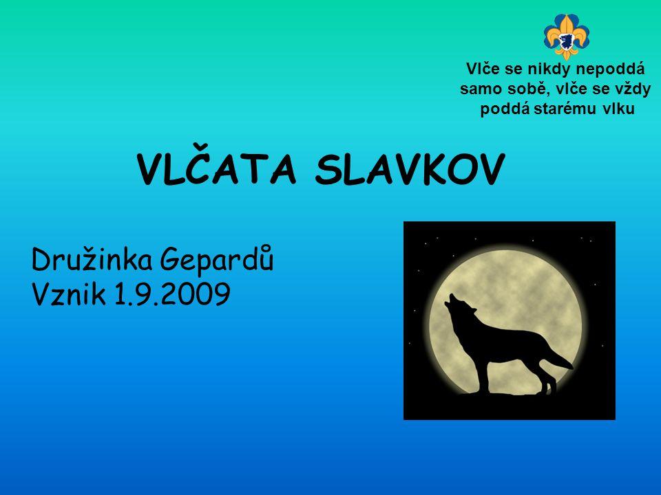 VLČATA SLAVKOV Družinka Gepardů Vznik 1.9.2009