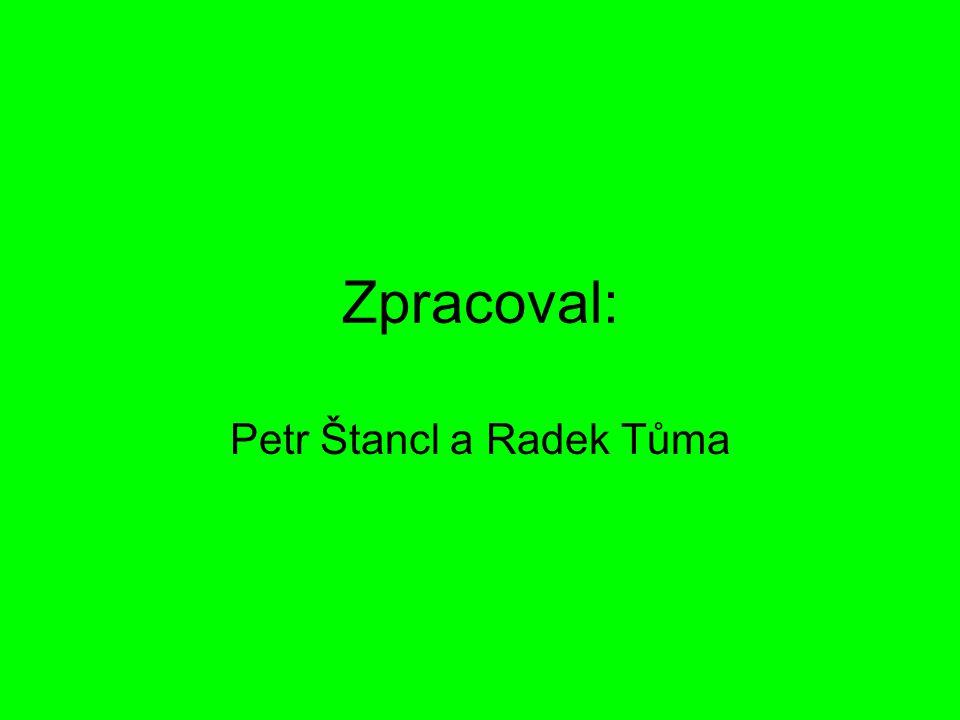 Petr Štancl a Radek Tůma