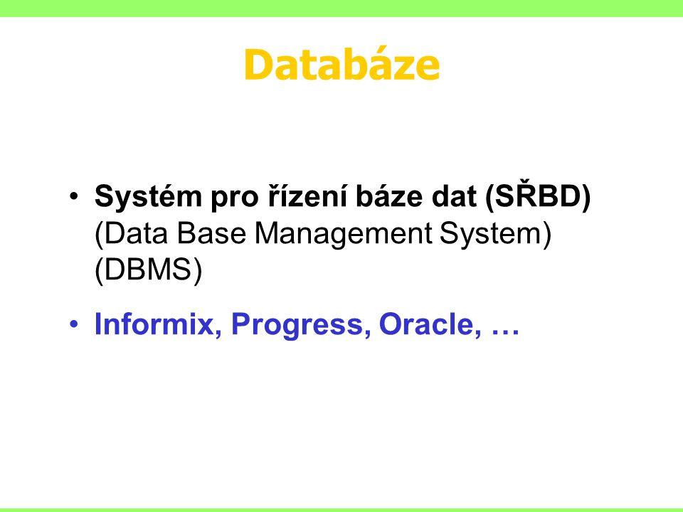 Databáze Systém pro řízení báze dat (SŘBD) (Data Base Management System) (DBMS) Informix, Progress, Oracle, …