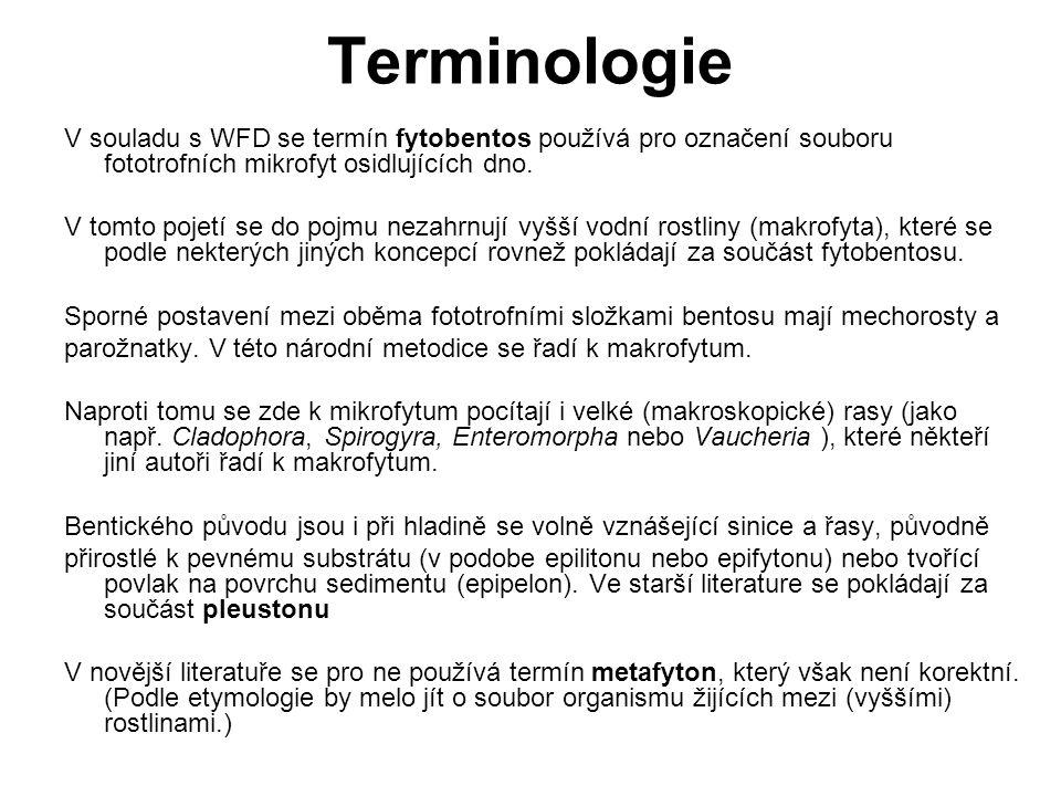 Terminologie V souladu s WFD se termín fytobentos používá pro označení souboru fototrofních mikrofyt osidlujících dno.