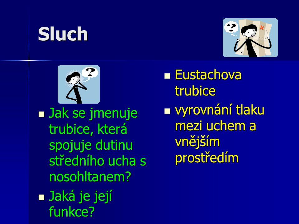 Sluch Eustachova trubice