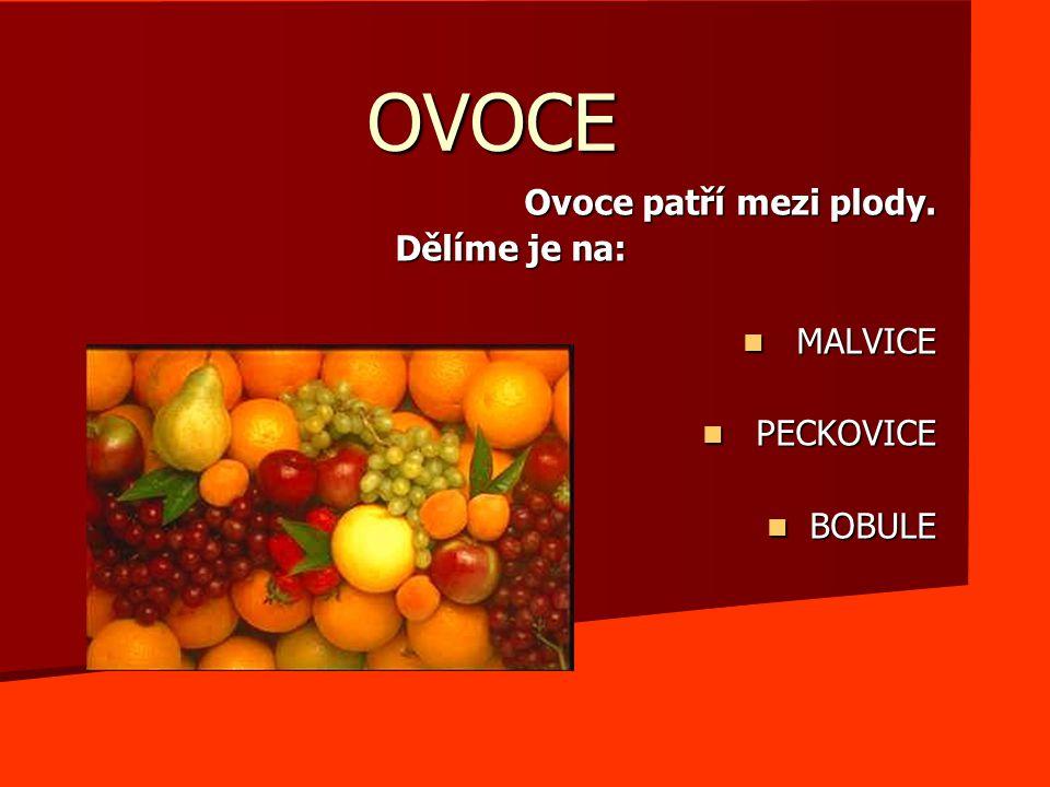 Ovoce patří mezi plody. Dělíme je na: MALVICE PECKOVICE BOBULE