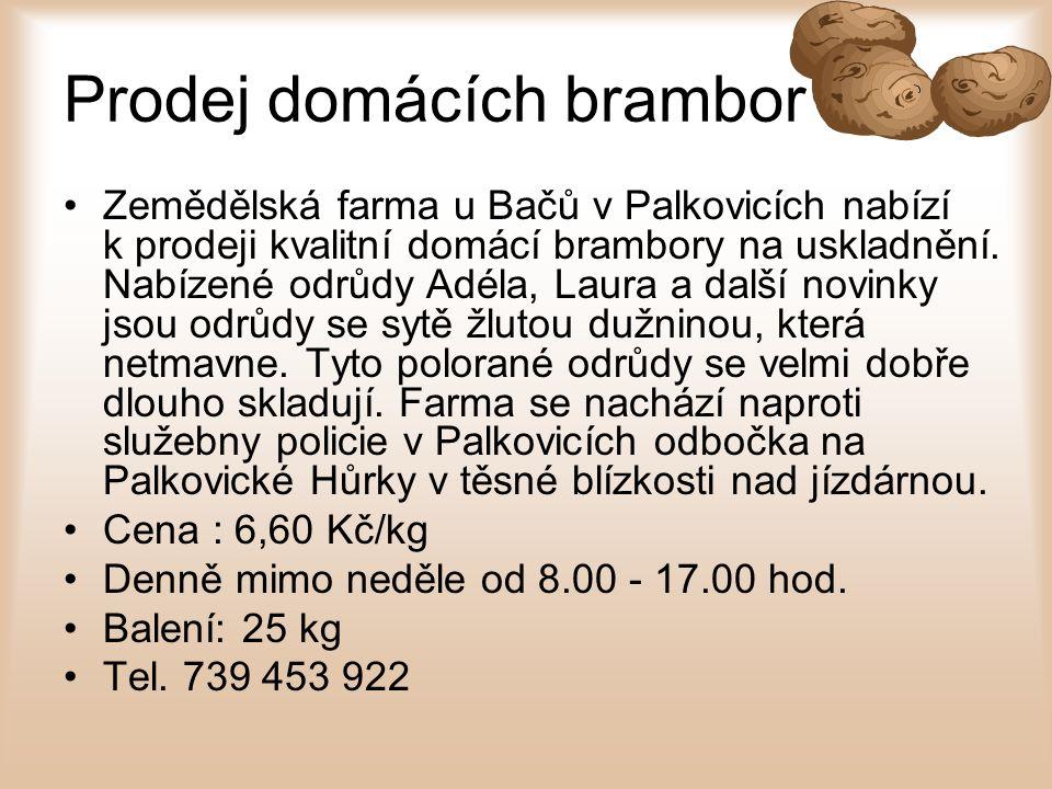 Prodej domácích brambor