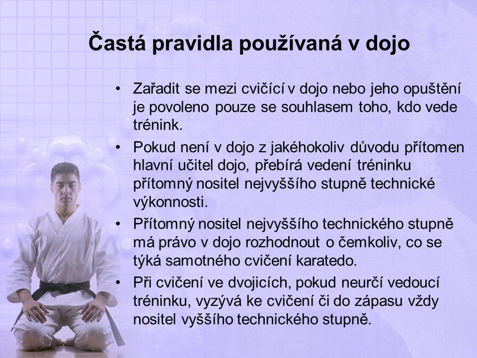 Častá pravidla používaná v dojo