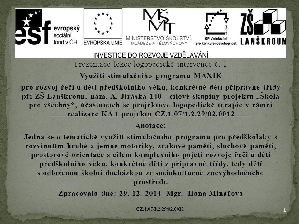 Využití stimulačního programu MAXÍK