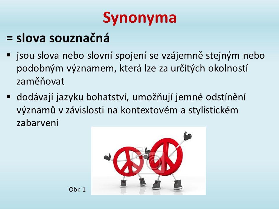 Synonyma = slova souznačná