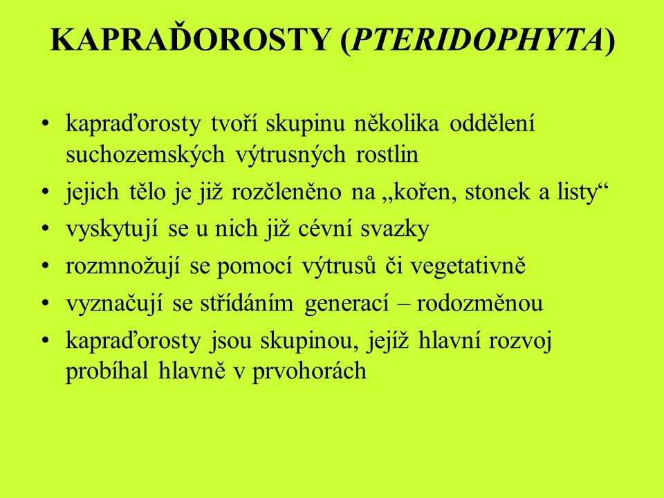 KAPRAĎOROSTY (PTERIDOPHYTA)