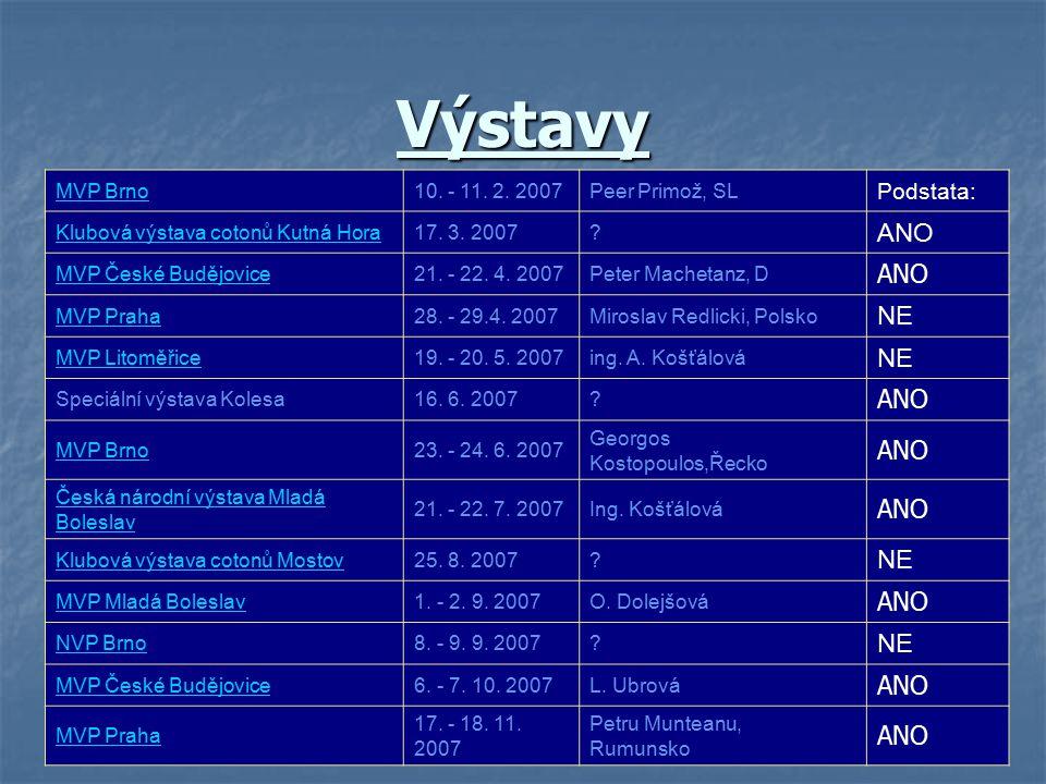 Výstavy ANO NE Podstata: MVP Brno 10. - 11. 2. 2007 Peer Primož, SL