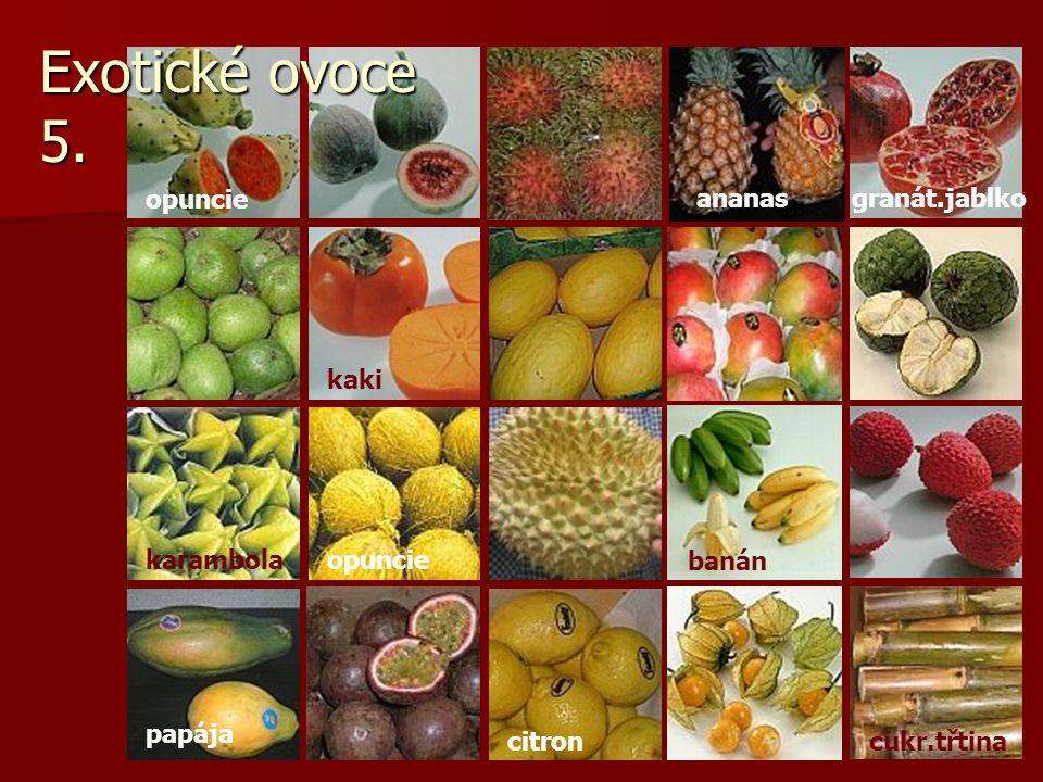 Exotické ovoce 5. opuncie ananas granát.jablko kaki karambola opuncie