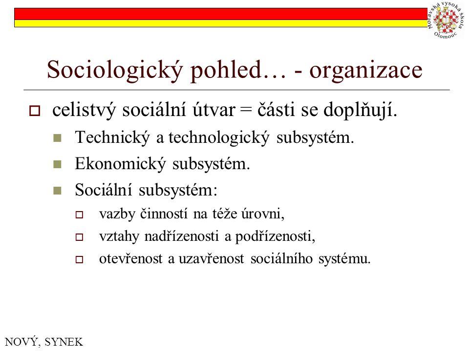 Sociologický pohled… - organizace