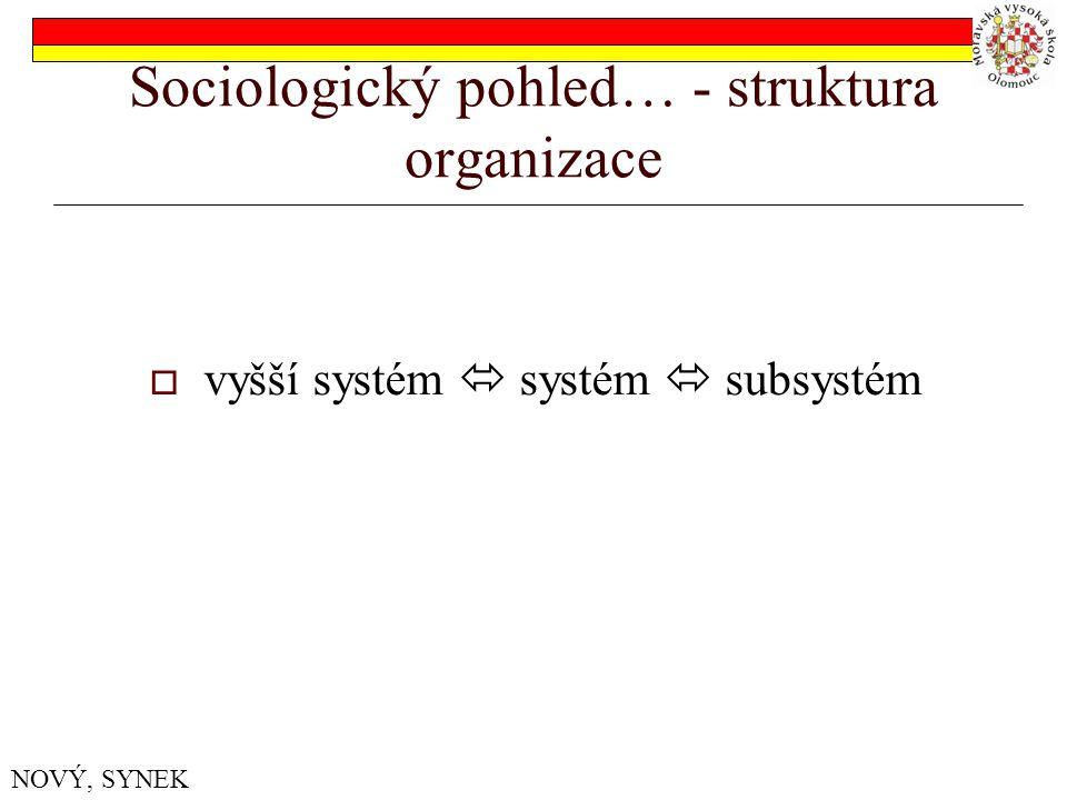 Sociologický pohled… - struktura organizace