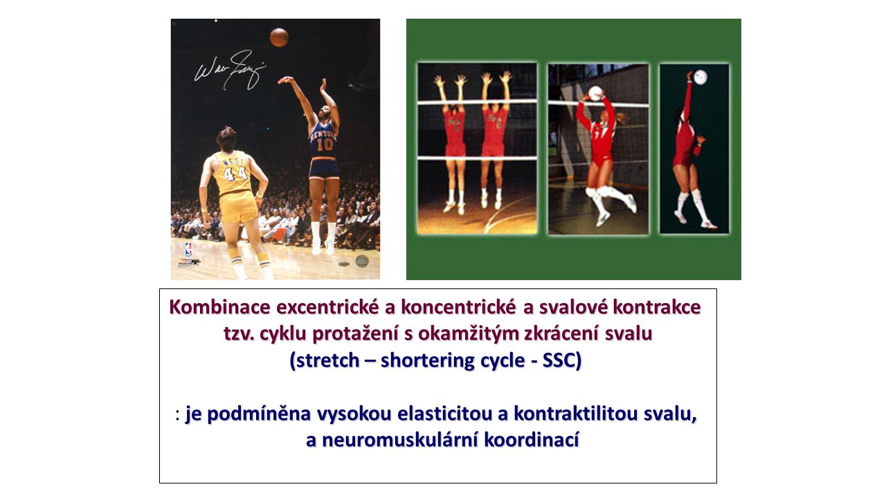 Kombinace excentrické a koncentrické a svalové kontrakce