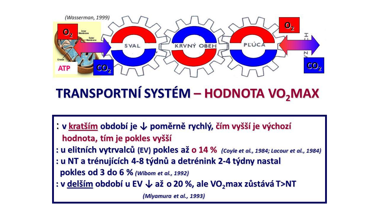 TRANSPORTNÍ SYSTÉM – HODNOTA VO2MAX