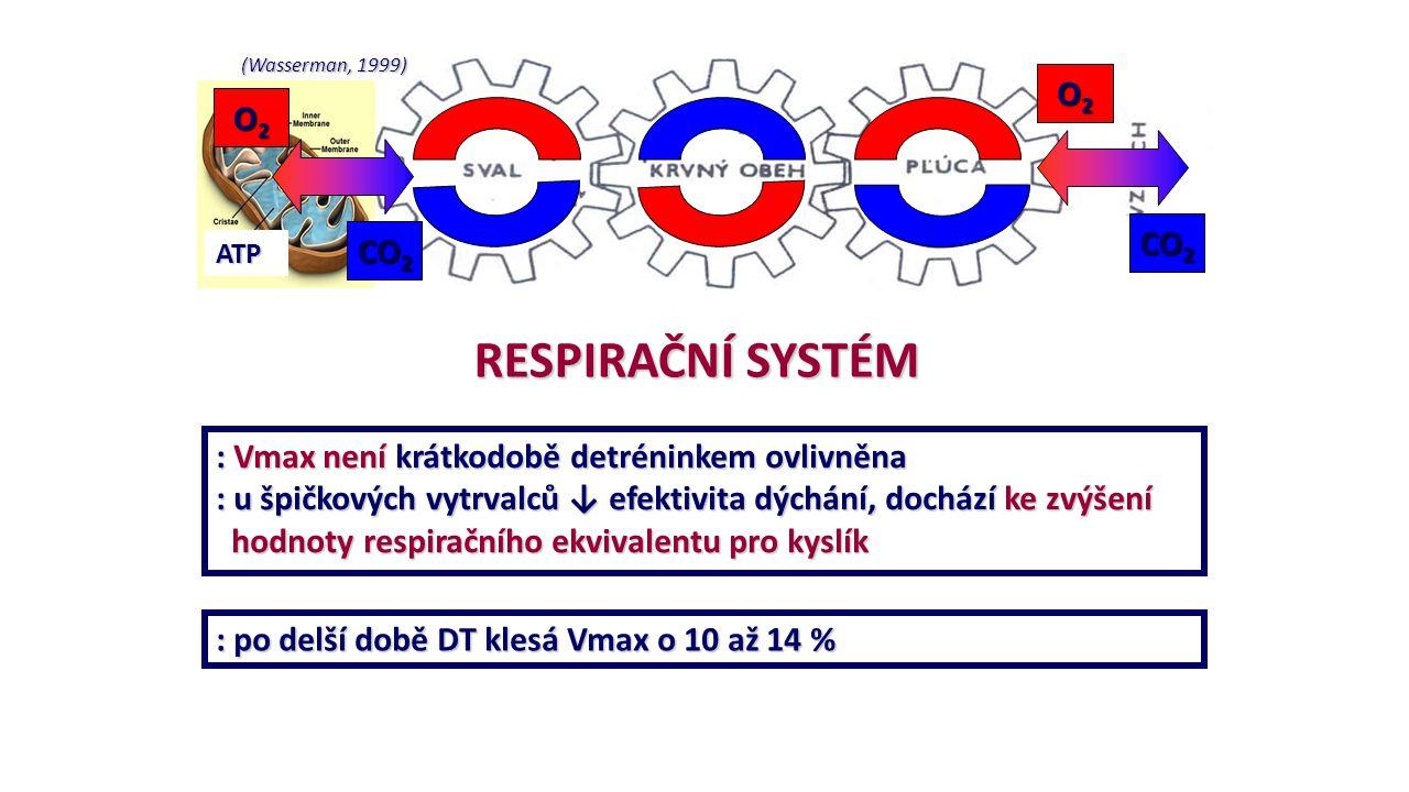 RESPIRAČNÍ SYSTÉM O2 CO2 : Vmax není krátkodobě detréninkem ovlivněna