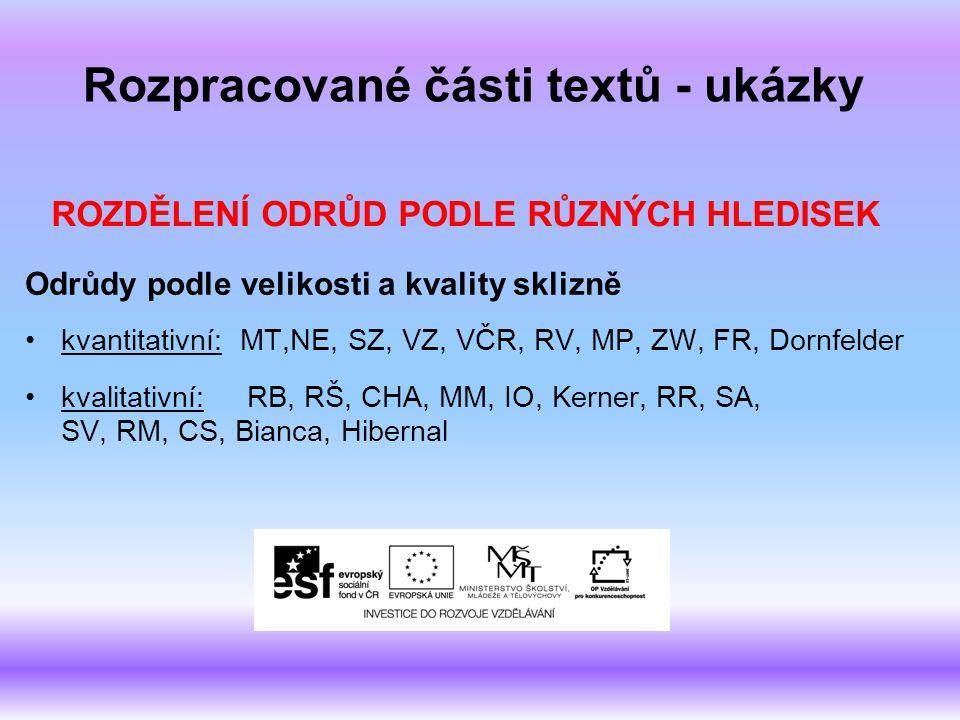 Rozpracované části textů - ukázky