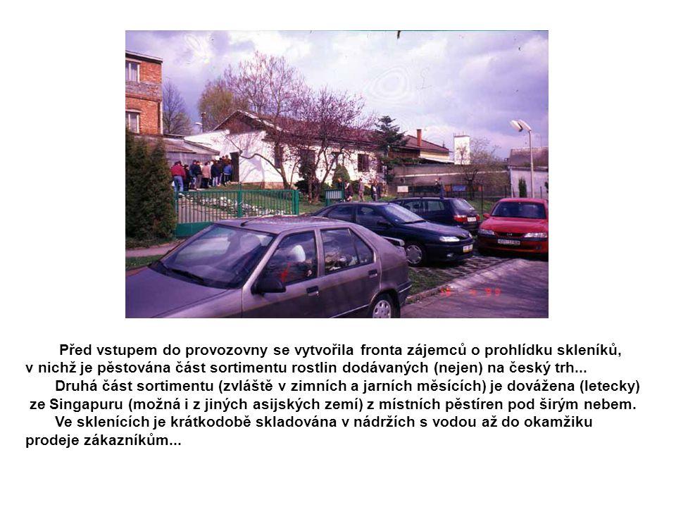 Před vstupem do provozovny se vytvořila fronta zájemců o prohlídku skleníků, v nichž je pěstována část sortimentu rostlin dodávaných (nejen) na český trh...